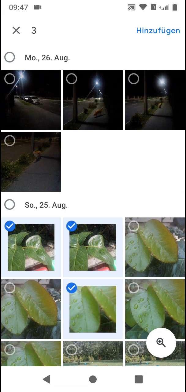 Schritt 6: Wähle die gewünschten Fotos aus und bestätige mit Hinzufügen